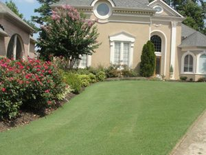 house with manicured lawn